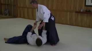 Aikido - Greg Olson Sensei - Seminar at Aikido Eastside