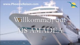 MS Amadea: Schiffsrundgang