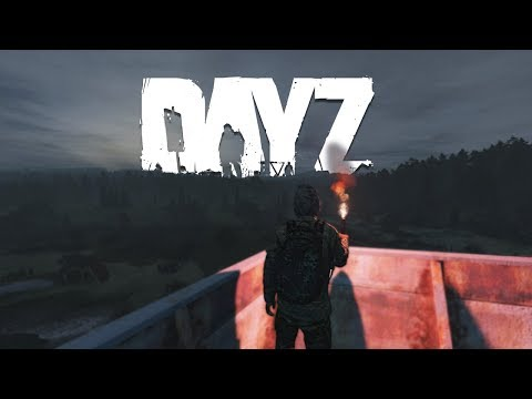 My DayZ 1.04 Experience