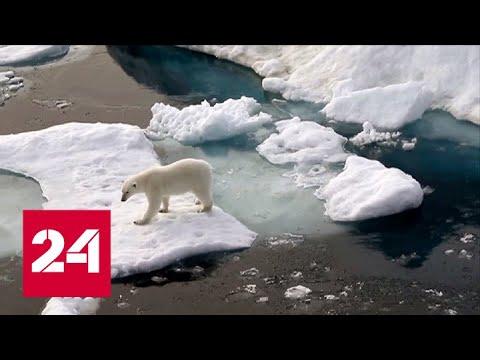 Аномальная погода по всему миру: в чем причина - Россия 24