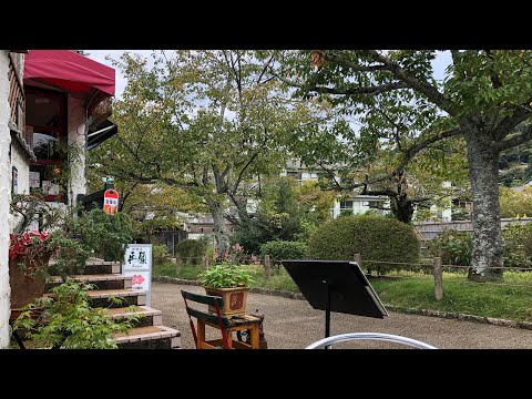 Coffee Hunt on the Philosopher's Path - Kyoto