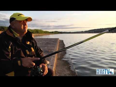 Video che pesca su una grande pertica nellestate