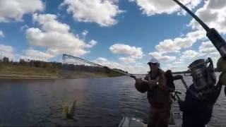 Рыболовная база ступино астраханской области