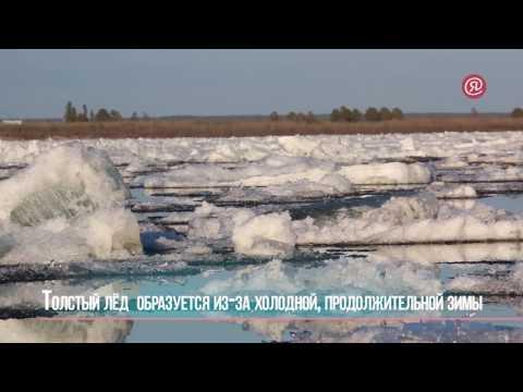 Ледоход-2017: Интересные факты о реке Лене