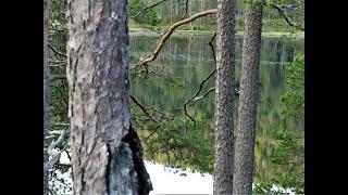 Рыбалка на озерах юга норвегии