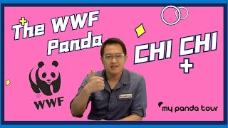 The Story Behind WWF Panda Logo