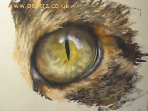 Speed Painting - Cat's Eye In Pastel Close Up