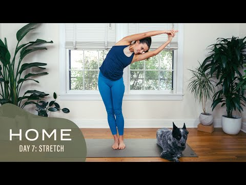 Home – Day 7 – Stretch | 30 Days of Yoga With Adriene