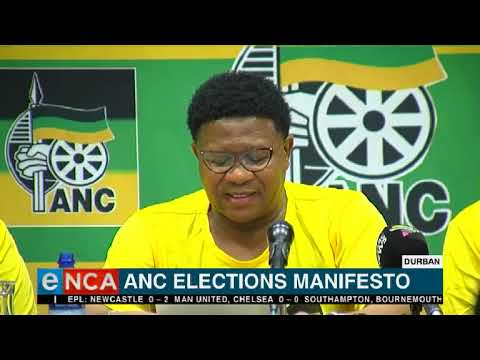 Fikile Mbalula briefs the media at elections manifesto