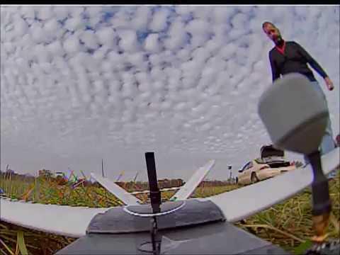 nano-talon-tail-view-flying