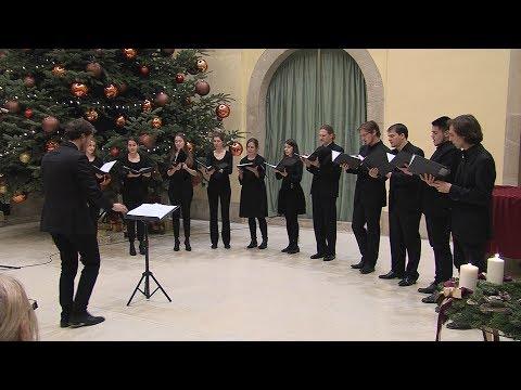 Adventi koncertek a Városházán 2017 - Az Istvánffy Kamarakórus - video preview image