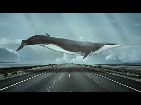 💦👅Синий кит Медленно Улетаю👅💦