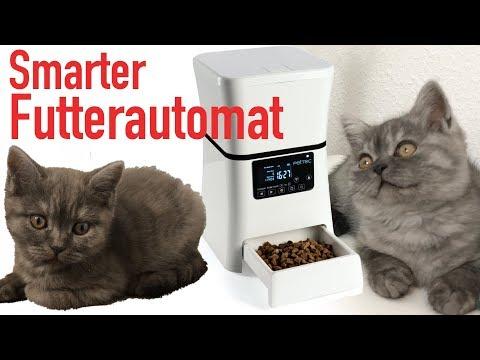 HUNDE & KATZEN SMART MIT APP FÜTTERN!! PETTEC PET FEEDER REVIEW!