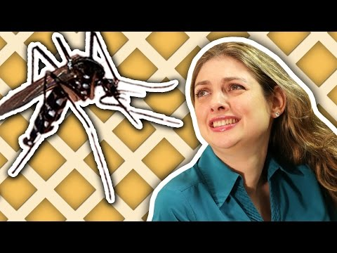 Tela contra dengue