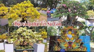 Ngỡ ngàng cây cảnh siêu độc đáo kỳ lạ ở hội hoa xuân Tao Đàn Tết Canh Tý 2020