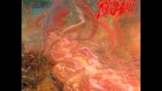 Morbid Angel - Brainstorm