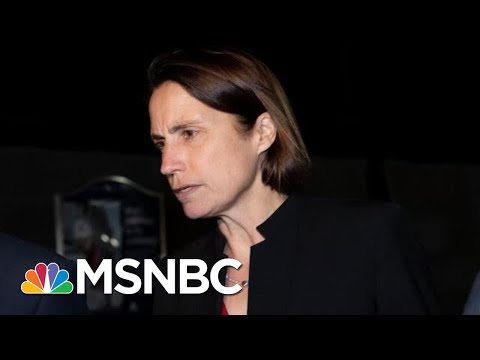 Trump's Former Russia Aide Fiona Hill Testifies To Hill Lawmakers | The 11th Hour | MSNBC