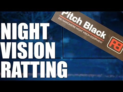 Pellet Power & Performance – Pitch Black Ratshooting
