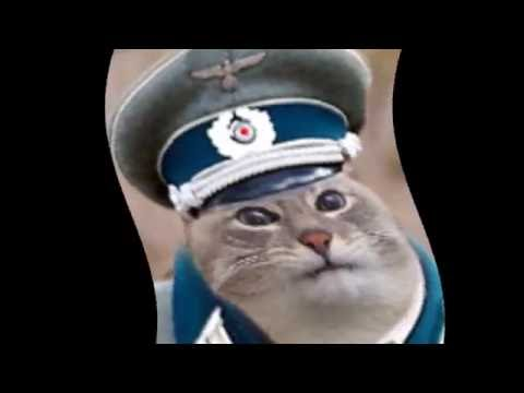 Ай-цвай полицай