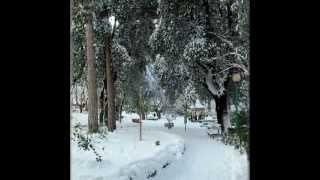 preview picture of video 'BOVINO: Neve del 3-4 febbraio 2012.'
