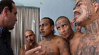 Mara Salvatrucha MS 13 The Ruthless Hispanic Street Gang