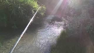 Рыбалка на реке коксу алматинская область
