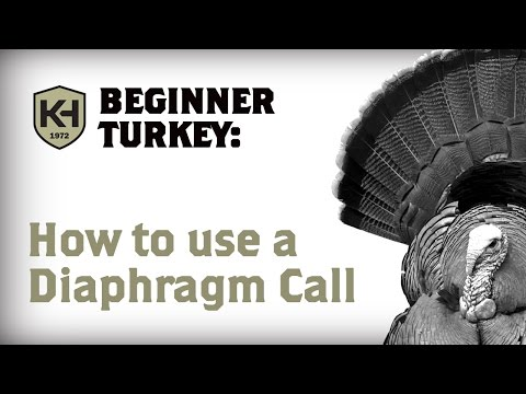 How to use a Diaphragm (Mouth) Call: Turkey Calling Tutorial for Beginners