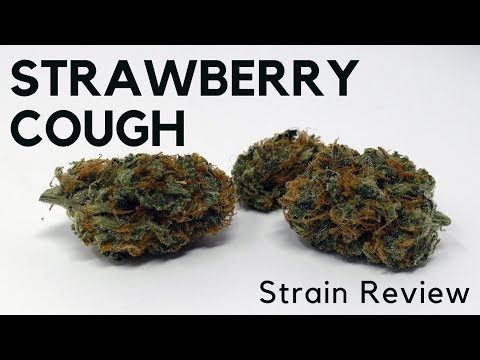 Strawberry Cough Strain Review - ISMOKE Mp3