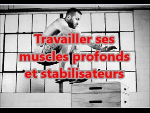 Augmente la capacité de travail des muscles