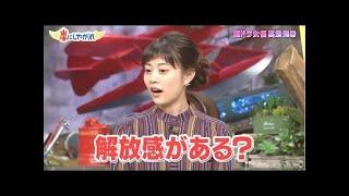 嵐にしやがれ高畑充希岡田結実10月29日161029!!2017