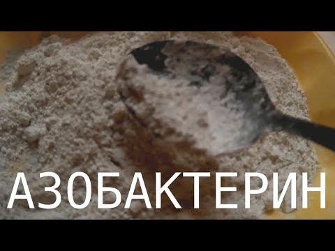 Википедия черви паразиты человека