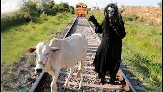Train and Cow Train vs Shaitan Shaitan vs Animal Keep the animal away from the railway track