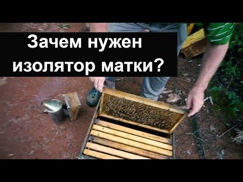 Пасека #51 Зачем нужен изолятор матки ? Ограничения матки в яйцекладке Пасека.Пчеловодство