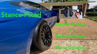 My 2019 Mustang GT Gets Steeda Lowering Springs + 25mm Spacers & NEW STANCE IS KILLER!!