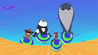 Zig & Sharko 🤪 BOING BOING 🤪 Jump around 2020 🙃 Cartoons for Children