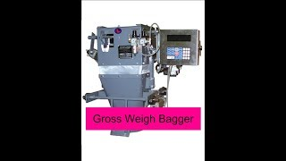 Inpak Systems | Express Scale | JM-FF-ED Gross Weigh Scale