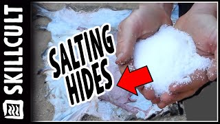 Preserving Hides For Tanning, Salt, Dry Or Freeze? How To