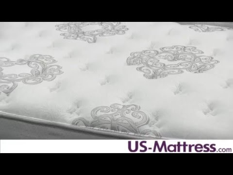 Spring Air Back Supporter Platinum Onyx Plush Mattress Expert Review