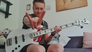 Haubentaucher video preview
