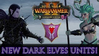 NEW DARK ELVES UNITS! Close-Up & Stats Guide | The Shadow & The Blade DLC - Total War: Warhammer 2