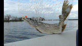 Рыбалка на щуку пробуем троллинг