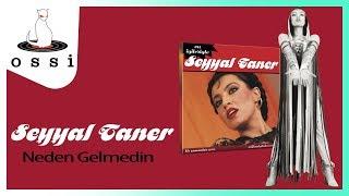 Seyyal Taner / Neden Gelmedin