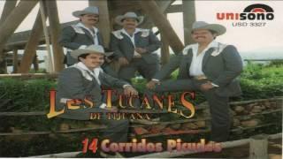 Tucanes De Tijuana   Los Mejores 14 Corridos Picudos Mix