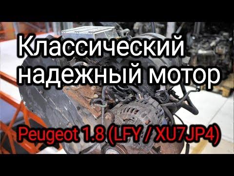 Фото к видео: Надежный француз с мокрыми гильзами. Веселая разборка классического двигателя (LFY / XU7JP4).