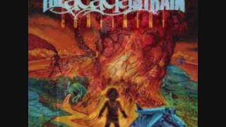 The Acacia Strain~JFC
