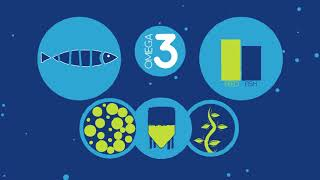 The GSI is working with our partners to look at a number of possible solutions to relieve pressure on marine Omega-3 resources