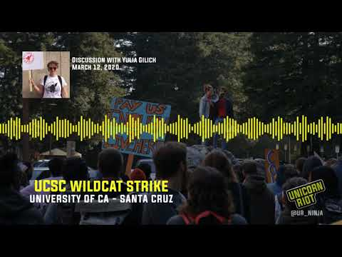 """""""Everyone Deserves A Cost-Of-Living Adjustment"""": Interview with UCSC Striker Yulia Gilich"""