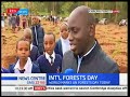 Celebrations for International forest day to be held at Karura Forest