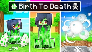The BIRTH to DEATH of a Minecraft Creeper!