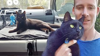 Man Quit His Job To Travel Around Australia With His Cat, And Their Bond Is Inspiring Thousands